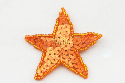 Star Sequin Motif – Small