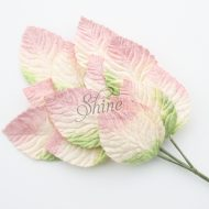Bunch of Ombre Velvet Leaves Pale Pink