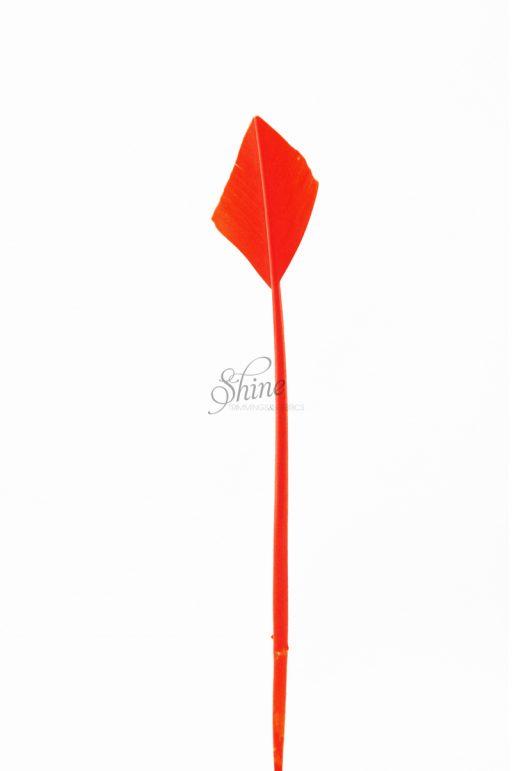 Arrow Head Feather Orange