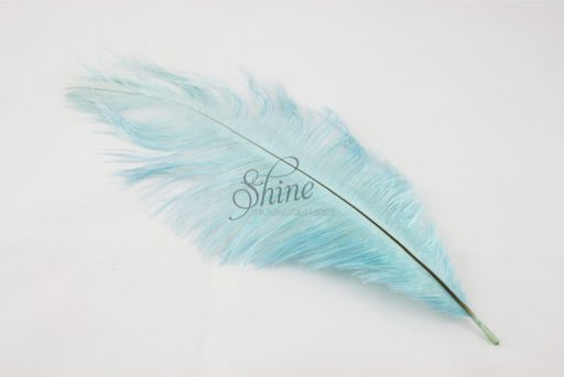 Blondine Feather Baby Blue