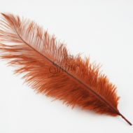 Blondine Feather Brown