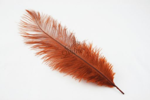 Blondine Feather Brown