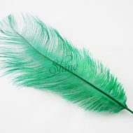 Blondine Feather Emerald Green