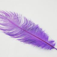 Blondine Feather Lilac