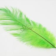 Blondine Feather Lime Green