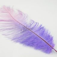 Blondine Feather Lavender