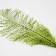 Blondine Feather Olive Green