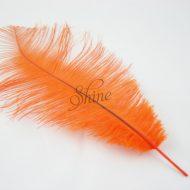 Blondine Feather Orange