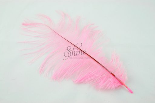 Blondine Feather Pale Pink