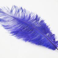 Blondine Feather Purple