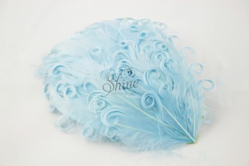 Curly Hackle Pad Baby Blue