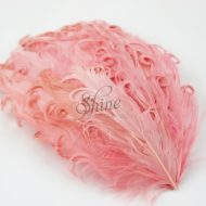 Curly Hackle Pad Dusty Pink