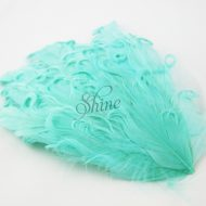 Curly Hackle Pad Mint Green