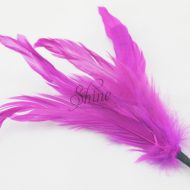 Feather Bunches