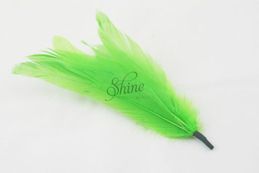 Cocktail Feather Spike Lime Green
