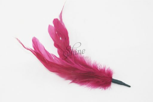 Cocktail Feather Spike Wine