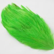 Large Hackle Pad Lime Green