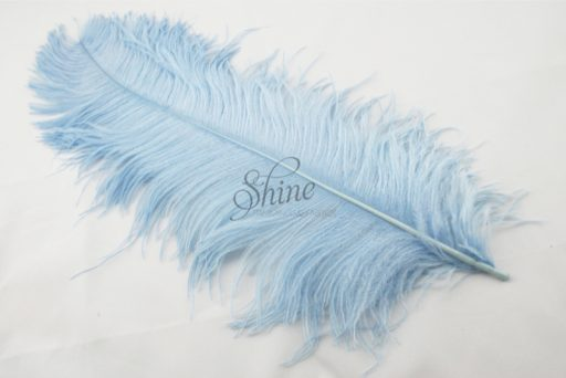 Ostrich Plume Baby Blue