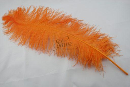 Ostrich Plume Orange
