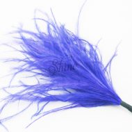 Ostrich Tuft Electric Blue