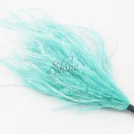 Ostrich Tuft Mint Green