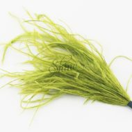 Ostrich Tuft Olive Green