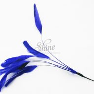Stripped Feathers Electric Blue
