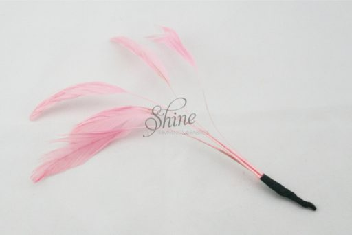Stripped Feathers Pale Pink