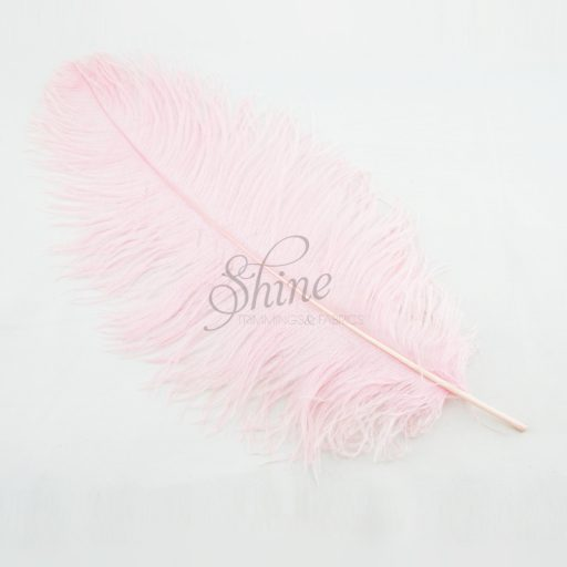 Ostrich Plume Baby Pink