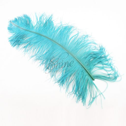 Ostrich Plume Teal Green