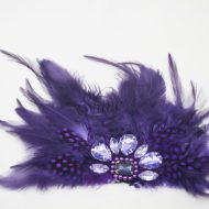 Feather Motifs