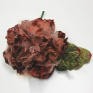 Cabbage Rose Mulberry