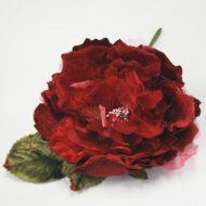 Cabbage Rose Burgundy
