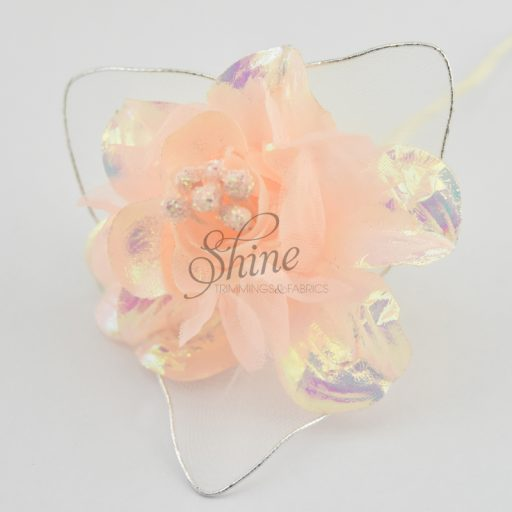 Single Iridescent Sparkle Bloom Apricot