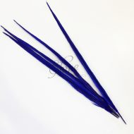 Ringneck Dyed Side Feather 55cm Royal