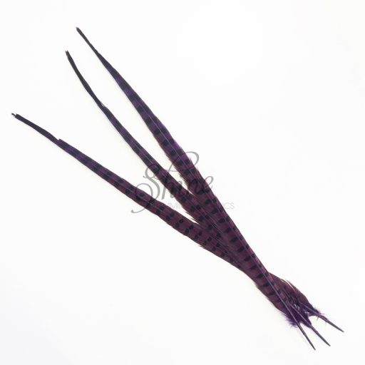 Ringneck Striped Pheasant Tail Feather Large 55cm Purple