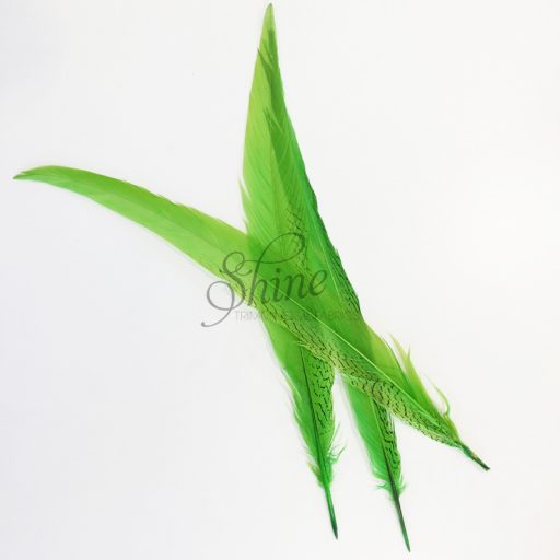 Silver Pheasant Feather Dyed 60cm Lime