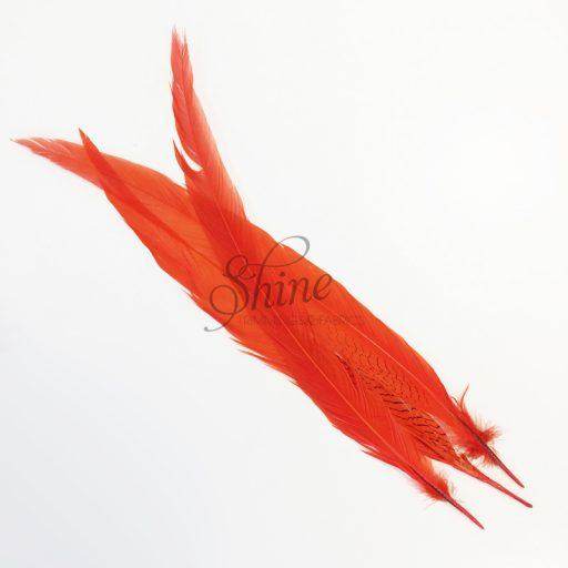 Silver Pheasant Feather Dyed 60cm Orange