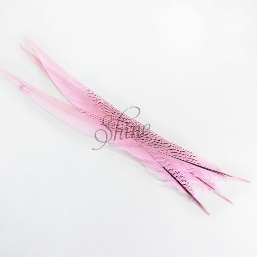 Silver Pheasant Feather Dyed 60cm Pale Pink