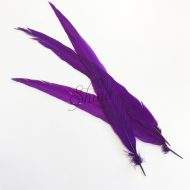 Silver Pheasant Feather Dyed 60cm Purple