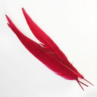 Silver Pheasant Feather Dyed 60cm Red