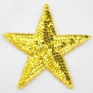 Star Sequin Motifs