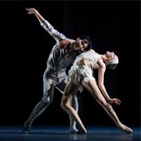 Les Ballets De Monte-Carlo: Lac - The Australian Ballet